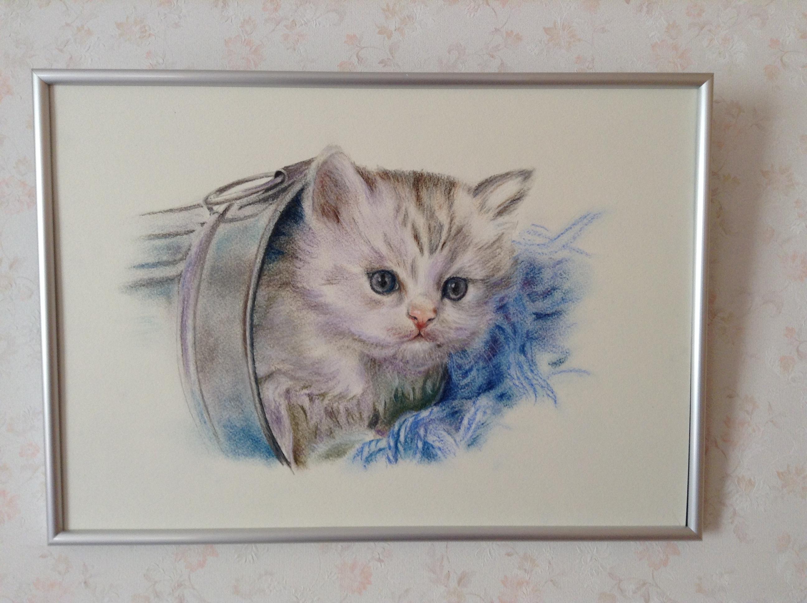 猫のパステル画(A3額入り原画)。コピーではありません。